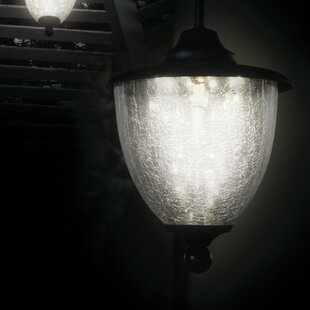 Online Reviews Fellsburg 5-Light Outdoor Pendant By Red Barrel Studio