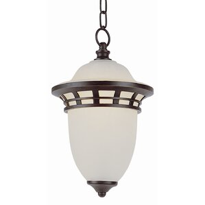 1 Light Outdoor Pendant