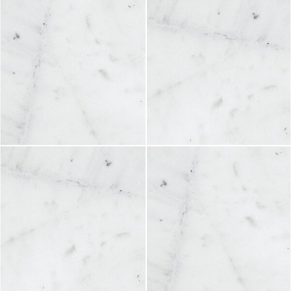 Verona Marble 12 x 12 Natural Stone Field Tile in Bianco Honed by Parvatile