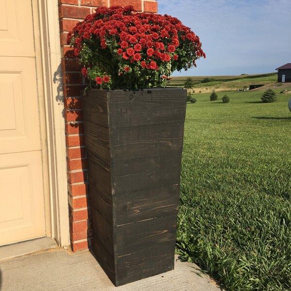 Ullrich Cedar Wood Planter Box by Gracie Oaks