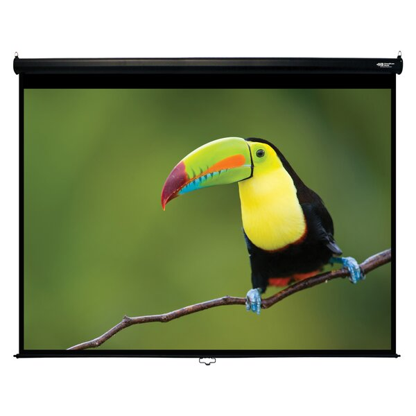Matte White120 Diagonal Manual Projection Screen by Hamilton Buhl