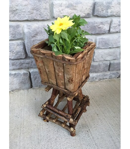 Glenna Barkwood Square On Twig Stand Pot Planter by Loon Peak