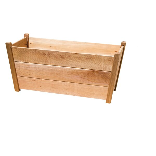 Phat Tommy 2 ft x 2 ft Cedar Planter Box by Buyers Choice