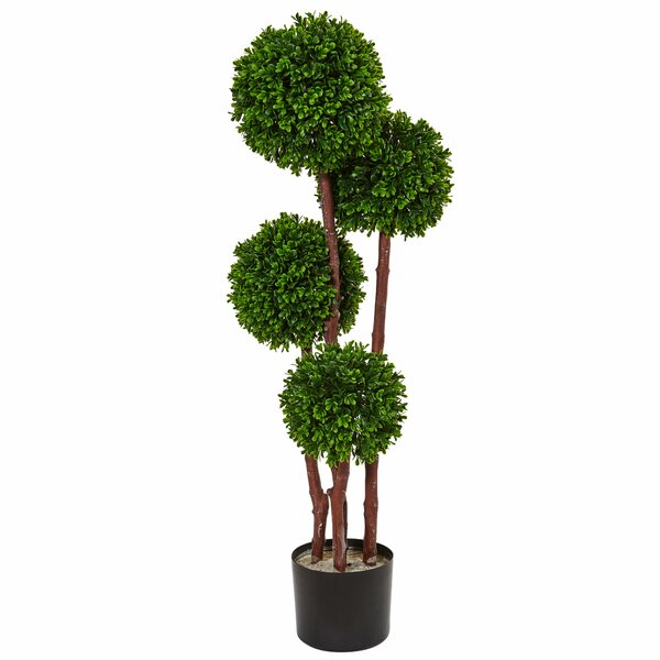 Artificial Floor Boxwood Topiary in Planter by Bloomsbury Market