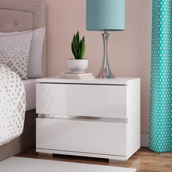 Salerno 2 Drawer Nightstand by Brayden Studio