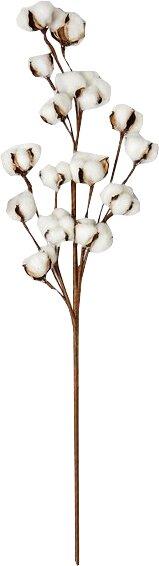 Cotton Spray Stem (Set of 3) by Gracie Oaks