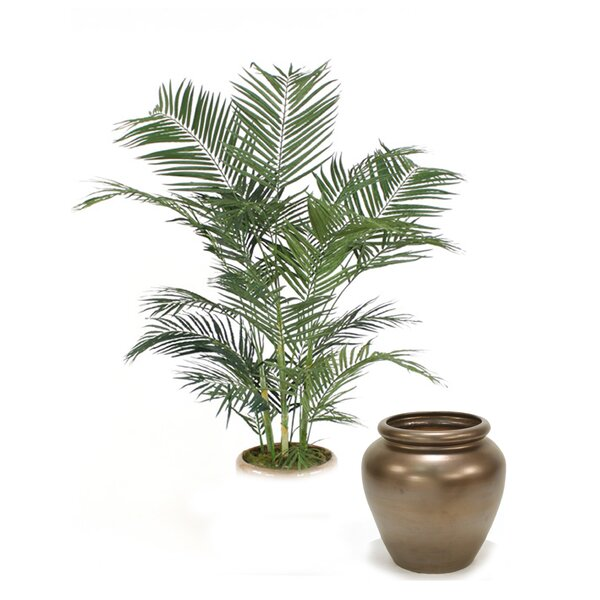 Areca Floor Palm Tree in Decorative Vase by Distinctive Designs