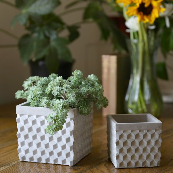 Sela 2-Piece Cement Pot Planter Set by Wrought Studio
