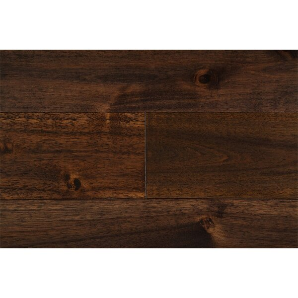 Anya 3-3/4 Solid Acacia Hardwood Flooring in Pekoe Brown by Welles Hardwood