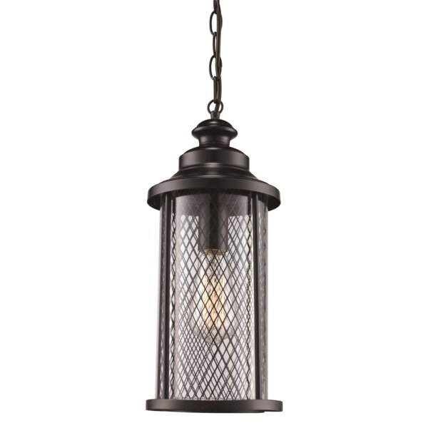 Torrence 1-Light Outdoor Hanging Lantern by Laurel Foundry Modern Farmhouse