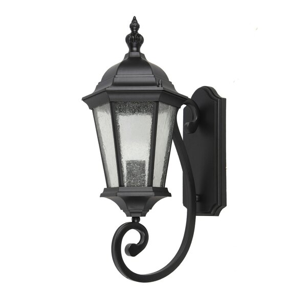 Dunand 1-Light Outdoor Wall Lantern by Canora Grey