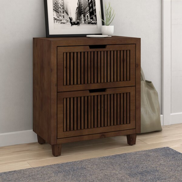 Amara 2 Drawer Accent Cabinet by Langley Street? Langley Street�?�