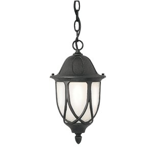 Reviews Newburg 1-Light Outdoor Pendant By Alcott Hill