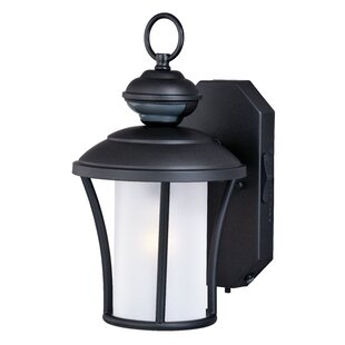 Purchase Hiro Dualux® 1-Light Outdoor Wall Lantern By Alcott Hill