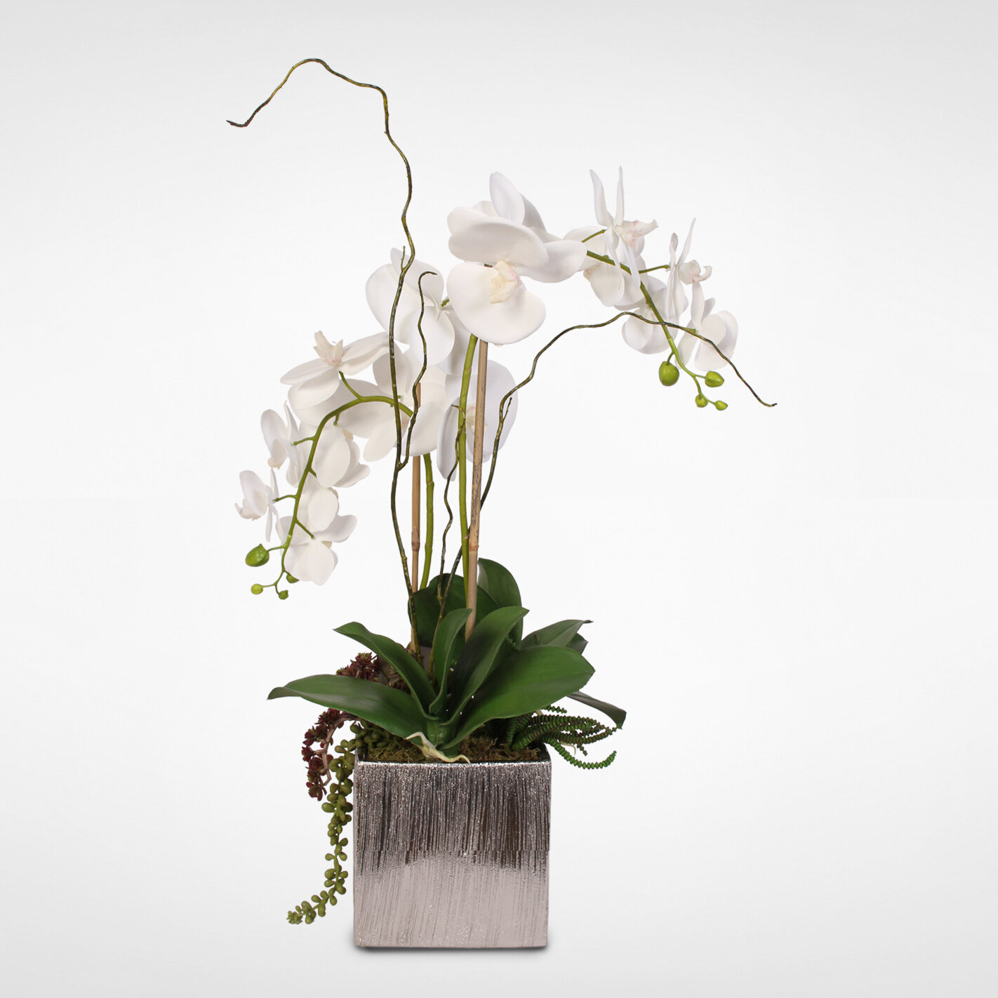 Latitude Run Silk Orchids And Succulents Floral Arrangement In Pot