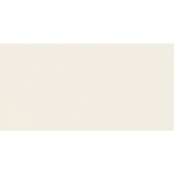 Element 12 x 24 Porcelain Field Tile in Off-White Snow Matte by Walkon Tile