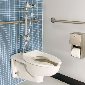 Afwall Millennium Flowise Dual Flush Elongated One-Piece Toilet by American Standard