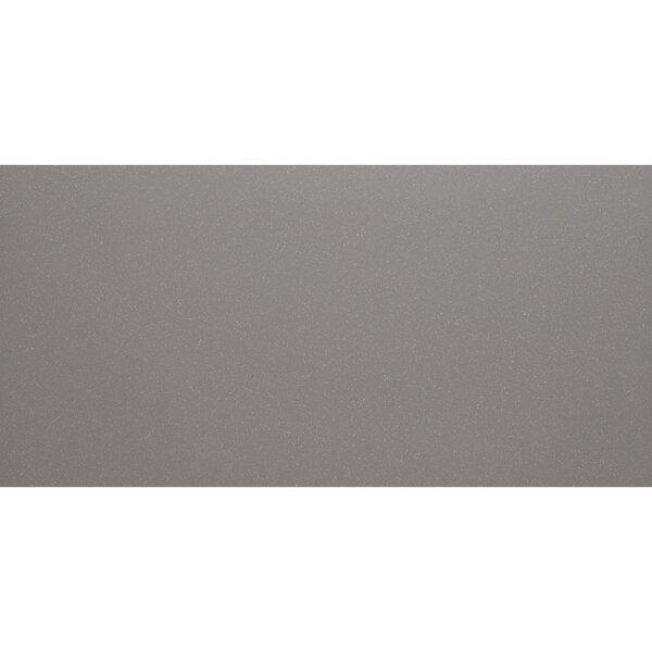 Aledo 12 x 24 Porcelain Field Tile in Trend Grey by Itona Tile