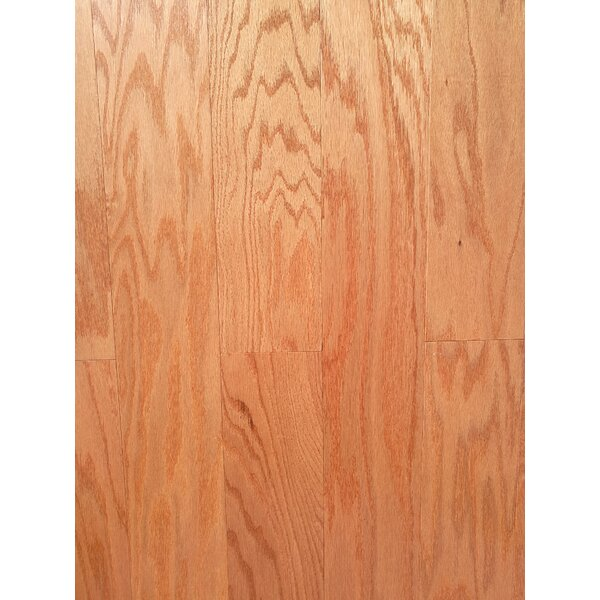 3 Myra Engineered Oak Hardwood Flooring in Tan by Welles Hardwood