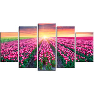 'Blooming Tulips at Sunrise' 5 Piece Graphic Art on Wrapped Canvas Set by Design Art