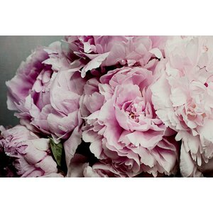 'Peonies Galore II' Photographic Print on Wrapped Canvas by Willa Arlo Interiors