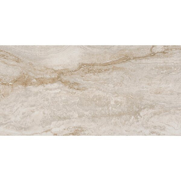 Bernini Bianco 12 x 24 Porcelain Field Tile in Cream/Warm gray by MSI