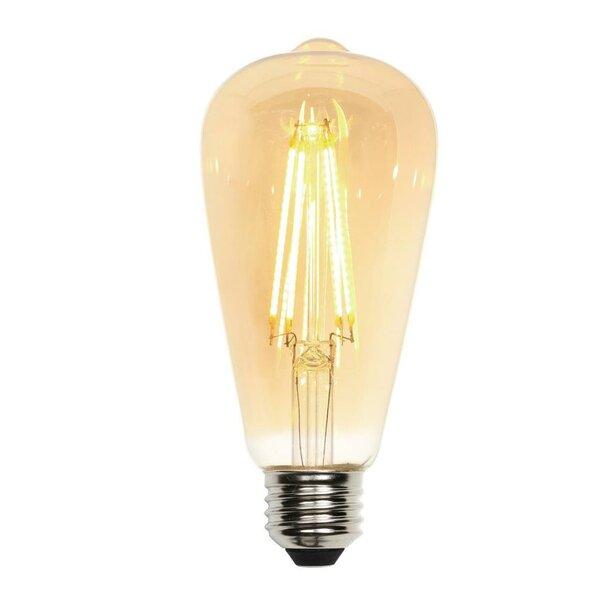 Medium Base ST20 LED Light Bulb by Westinghouse Lighting