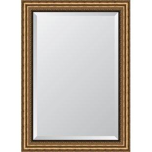 Melissa Van Hise Antique Gold Resin Frame Wall Mirror