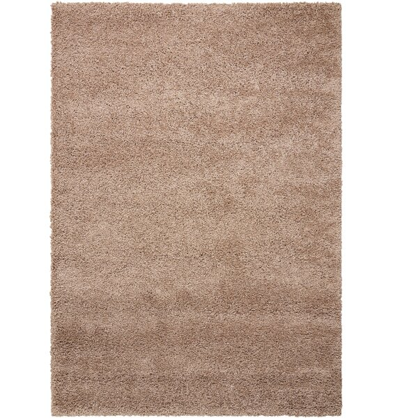 Aileu Latte Area Rug by Latitude Run