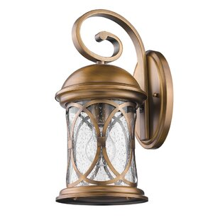 Shopping for Glaucia Elegant 1-Light Outdoor Wall Lantern By Darby Home Co