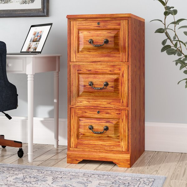 Southview 3-Drawer Vertical File by Darby Home Co