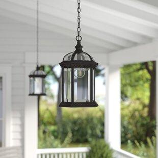 Outdoor hanging lights youll love wayfair sarah 1 light outdoor hanging lantern mozeypictures Choice Image