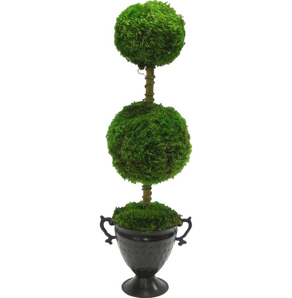 Verdant Two-Ball Topiary by Birch Lane™