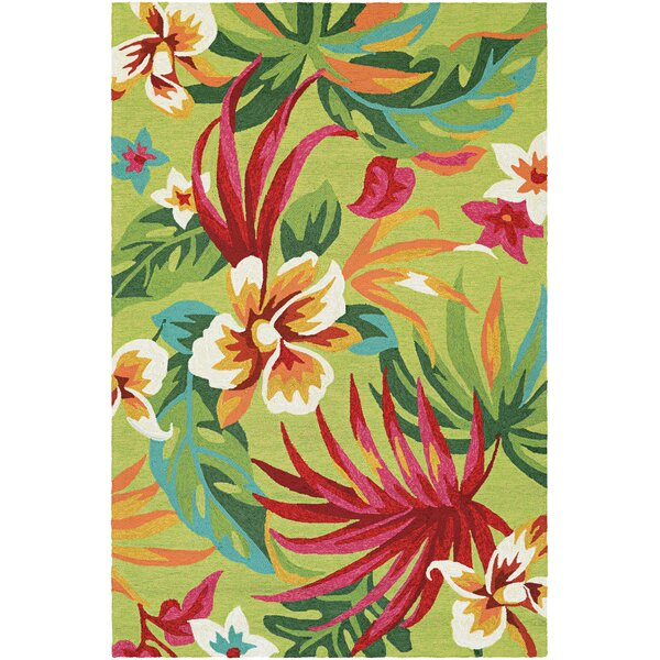 Amberjack Painted Hand-Woven Fern/Red Indoor/Outdoor Area Rug by Bay Isle Home