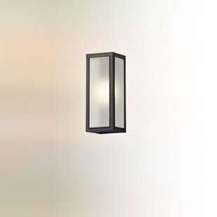 Affordable Satyadev 1-Light Glass Shade Outdoor Flush Mount By 17 Stories