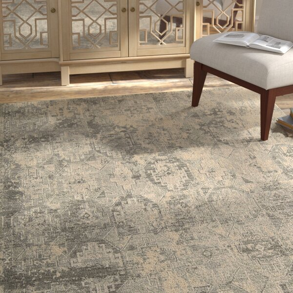 Soualem Tibetan Gray/Ivory Area Rug by Bloomsbury Market