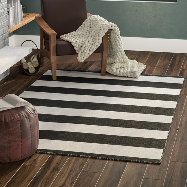 Buske Hand-Woven Black Indoor/Outdoor Area Rug by Mercury Row