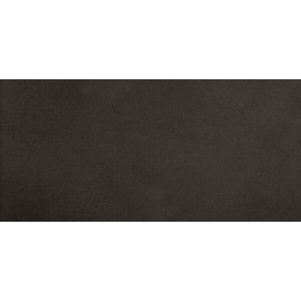 Perspective 12 x 24 Porcelain Field Tile in Charcoal by Emser Tile