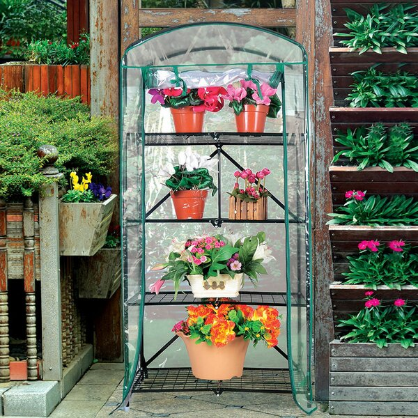 2.29 Ft. W x 1.64 Ft. D Mini Greenhouse by Pier Surplus