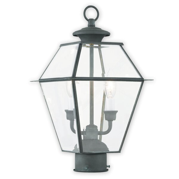 Orchard Lane Outdoor 2-Light Lantern Head by Three Posts