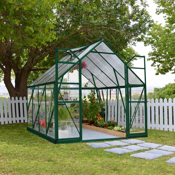 Balance 8 Ft. W x 8 Ft. D Greenhouse by Palram