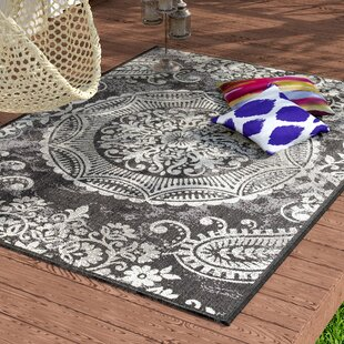 Bargain Gaskins Dark Gray Indoor/Outdoor Area Rug By Bungalow Rose