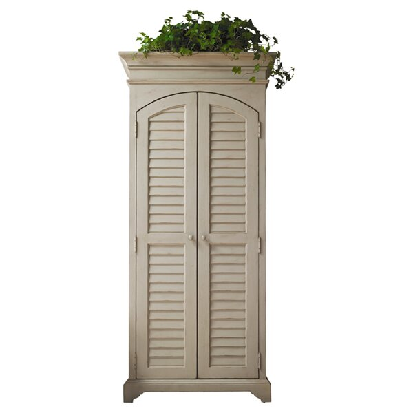 Bloomer 2 Door Accent Cabinet by Darby Home Co
