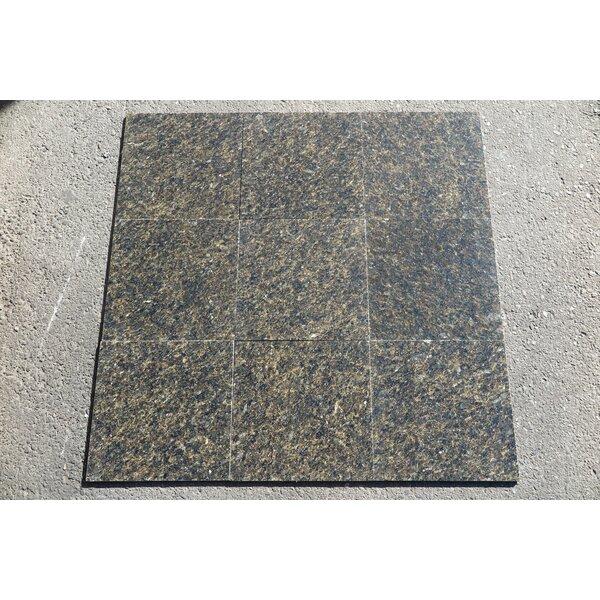 Ubatuba Polished 12x12 Granite Field Tile