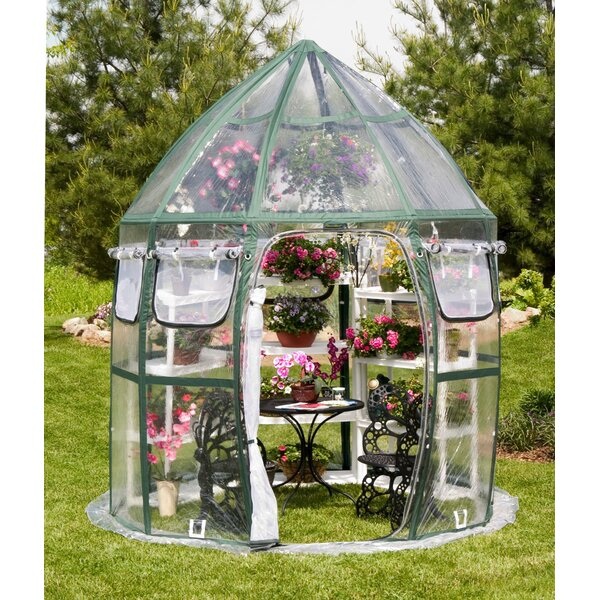 Conservatory 8.5 Ft. W x 8.5 Ft. D Greenhouse by Flowerhouse