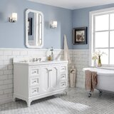Kylan 48 Single Bathroom Vanity Set with Mirror byAlcott Hill