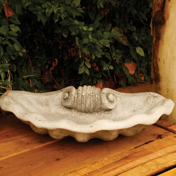 Shell Birdbath by OrlandiStatuary