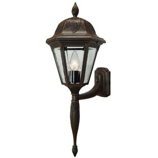Where buy  Floral 1-Light Outdoor Sconce By Special Lite Products