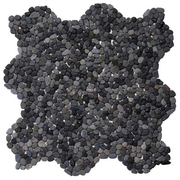 Decorative Pebbles Random Sized Natural Stone Pebble Tile in Barbados Black by Solistone