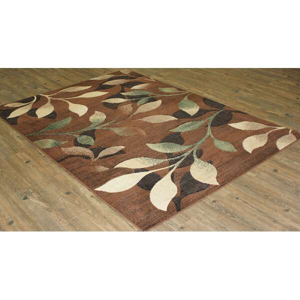 Lifestyle Brown/beige Area Rug By Rug Factory Plus.